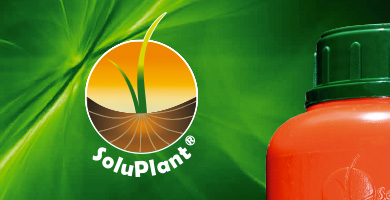 bannersoluplant