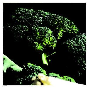 Brócoli Híbrido Mediterráneo F1